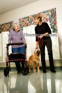 a-1 home care elderly downey